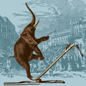 Hormigas que alzan elefantes