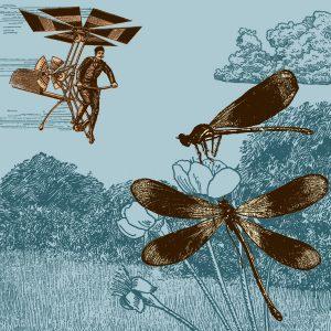 Libélulas que sueñan con ser helicópteros